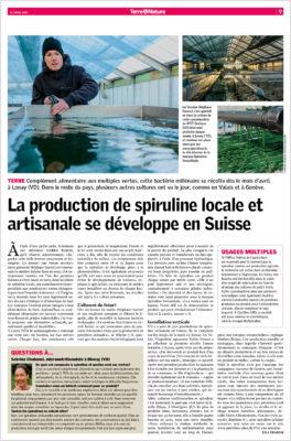 La production de spiruline locale et artisanale se développe en Suisse